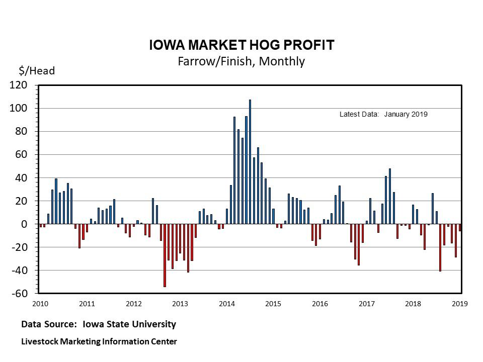 Graphic -- Monthly Market Hog Profit, ISU