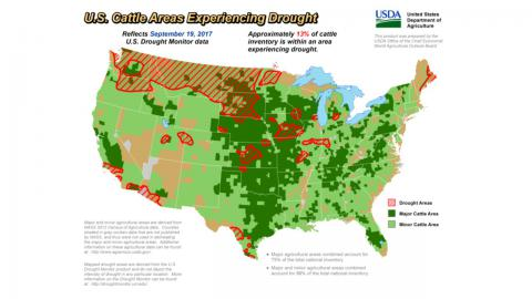 U.S. Map of Cattle In Drought Zones