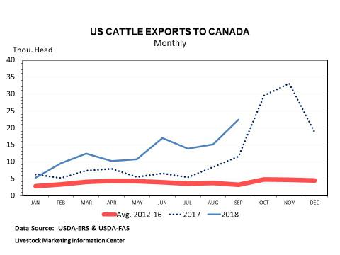 Graphic -- Monthly U.S. Cattle Exports to Canada